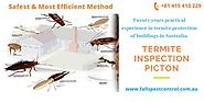 Extremely knowledgeable Termite Inspection Blue Mountains - Falls Pest Control