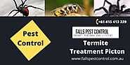 Effective Termite Treatment Picton- Falls Pest Control