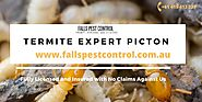 Termite Expert Picton Control 100% Pest with Effective Treatment