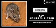 Effective Solution for Rat Control Picton - Falls Pest Control