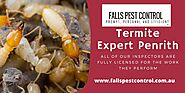 Long Term Protection Plans based on your needs Termite Treatment Penrith