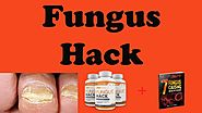 Fungus Hacks Scam - YouTube