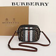 Burberry Monogram Stripe E-canvas Camera Bag In Brown Outlet Burberry Cheap Sale Store