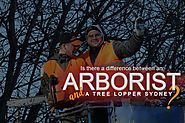 Tree Lopper Sydney: The Difference of A Tree Lopper and An Arborist