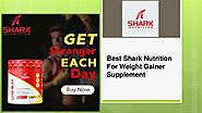 Best Shark Nutrition For Weight Gainer Supplement