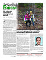 - The Working Forest, Your #1 source for forestry and forest industry news