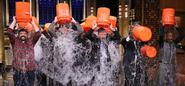 "4 Marketing lessons to learn from the ALS ""Ice Bucket Challenge"""