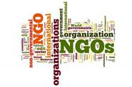 NGOs (Non Government Organisations)