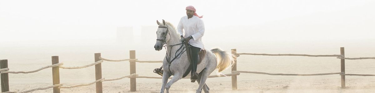 Headline for Top 6 Thrilling Adventures to have in UAE - For the adventure seekers!