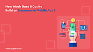 How Much Does it Cost to Build an E-commerce Mobile App?