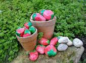 Painted Rocks for Artistic Yard