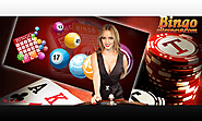 Bingo games with play most popular best bingo sites to win