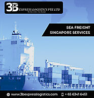 Freight Forwarding Logistics Company Singapore Sea Freight Singapore Warehousing Logistics