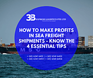 How to Make profits in Sea Freight Shipments - Know the 4 Essential Tips