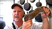 BEST WAY TO CLEAN AND COOK SQUIRREL Cast Iron Cooking