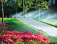 Automatic Irrigation Dubai Doesn't Have To Be Hard | DaisyLandscapes