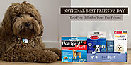 National Best Friend's Day – Top 5 Gifts for Your Fur Friend