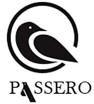 Passero | Women Clothing Store In India | Women's Shirts & Tops