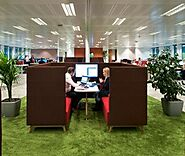 Biophilic Design For Performance & Productivity - MentorWay