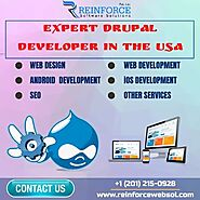 Build Creative Business Website With Expert Drupal Developers
