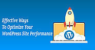 Effective Ways To Optimize Your WordPress Site Performance - AppMomos