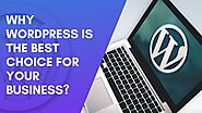 Why WordPress Is The Best Choice For Your Business? by Web Design Los Angeles Company