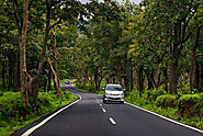 Self-Drive Road Trips from Bangalore to Bandipur Forest - Things to do in Bandipur Forest