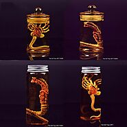 Alien Larva Face Bug With Glass Bottle | Shop For Gamers