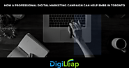 How A Professional Digital Marketing Campaign Can Help SMBs In Toronto
