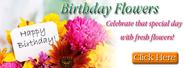 Las Vegas Florists | Send Flowers Las Vegas | The Dancing Dandelion Florist
