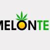 melontek lighting