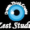 Zest Studio