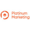 Platinum Websitedesign